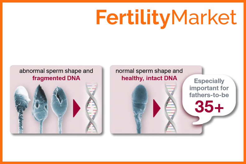 Difference between fragmented and healthy, intact DNA. Boost fertility with healthy sperm DNA.
