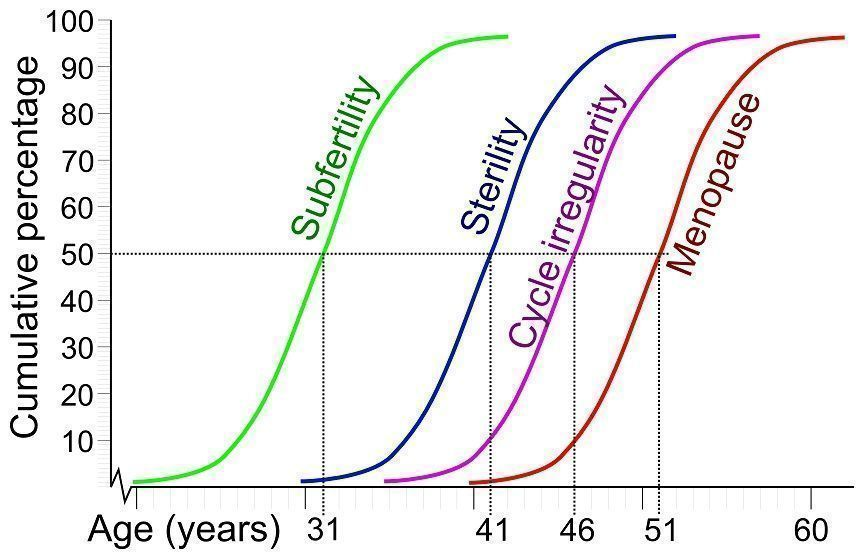 Pic.  1: The variability of female reproductive ageing