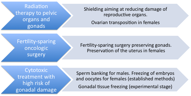 Pic. 1: Strategies for fertility preservation in males and females